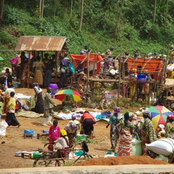 A community in the DR Congo, one of the countries most affected by violence in 2015.