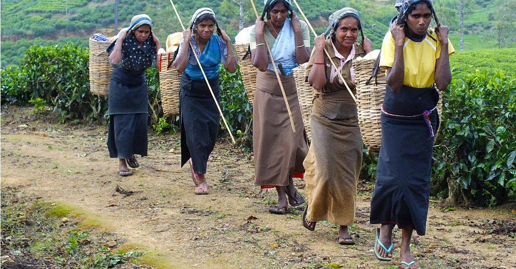 sri lankan people