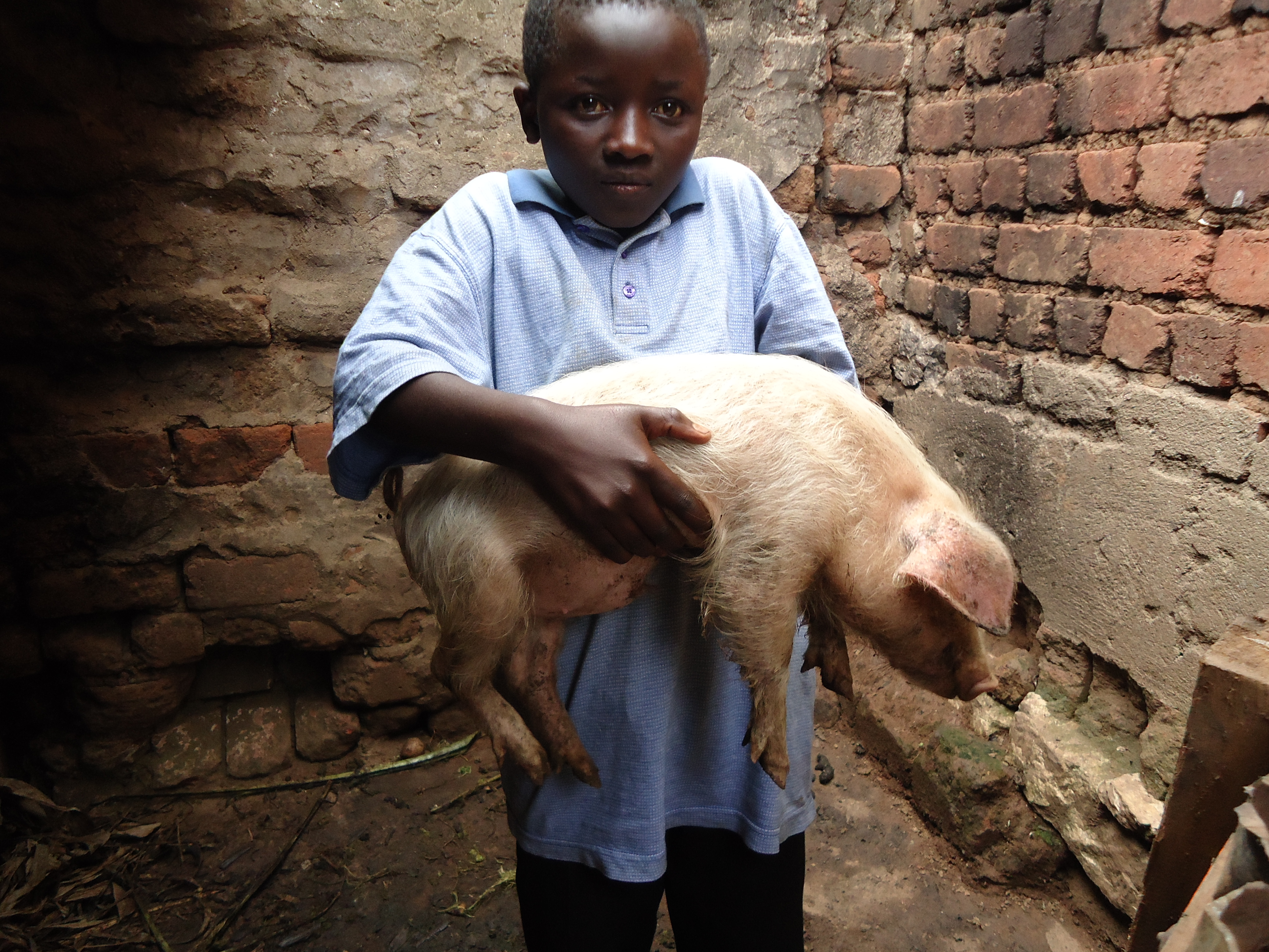 A rescued child soldier holds a pig